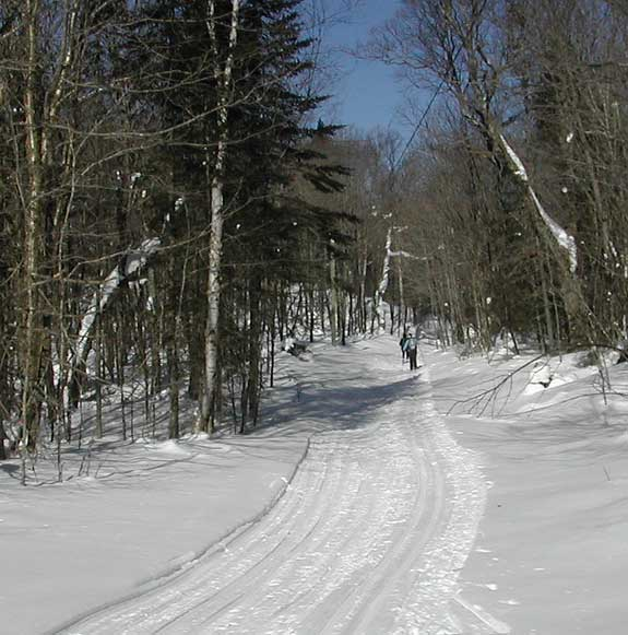 Trail photo from the Wabos Loppet cross country ski tour