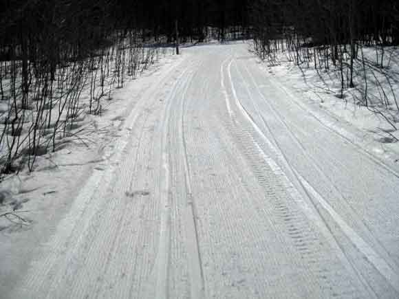 Valley Spur cross country ski trails