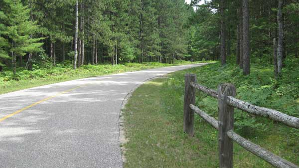 Roller skiing in Hartwick Pines State Park