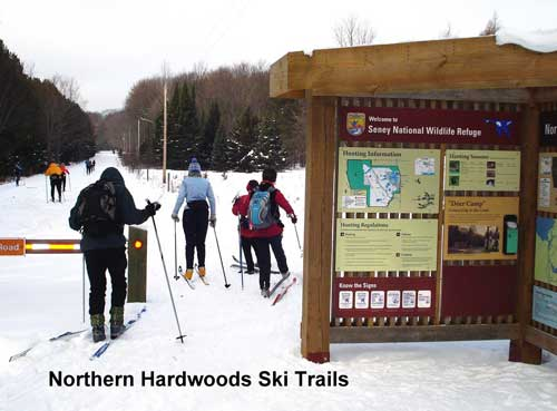 Wastenaw Ski Touring Club visits Seney National Wildlife Refuge cross country skiing