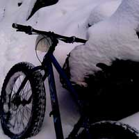 Fatbikes on Cross-Country Ski Trails: Kingdom Trails in Vermont