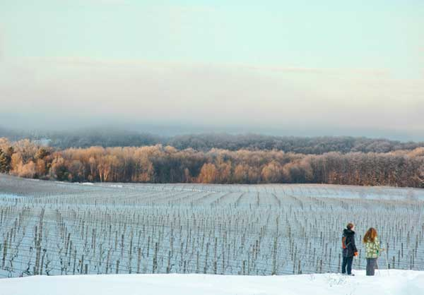 As winter snows cover the rolling hills of Northern Michigan's wine country, several wineries on the scenic Leelanau Peninsula near Traverse City have responded with a new approach to touring and tasting: a vineyard-to-vineyard ski and snowshoe trail.