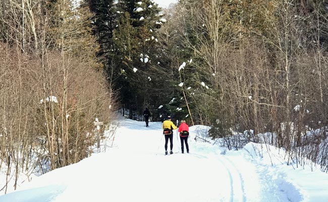 Two skiers on Stokely Creek trail