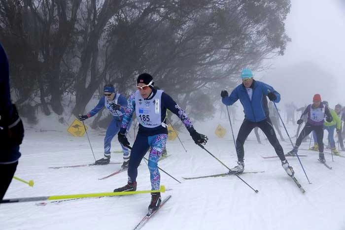 Michigan Cup skier <b>Michael Bourassa</b> (185) gets an early start to the 2015-2016 race season with the 42k Kangaroo Hoppet, Australia&#39;s international ski marathon. Bourassa finished 115th for the men in 2:29:41.987, 6th in his age class and 4th American. <b>Ann Wagar</b> was there too, but a bad cold caused her to DNF 7k into the race.