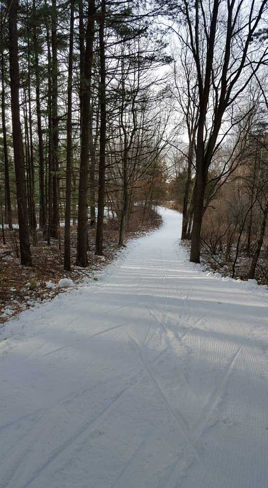 Cross country ski trail used for the Frosty Freestyle and Krazy Klassic races