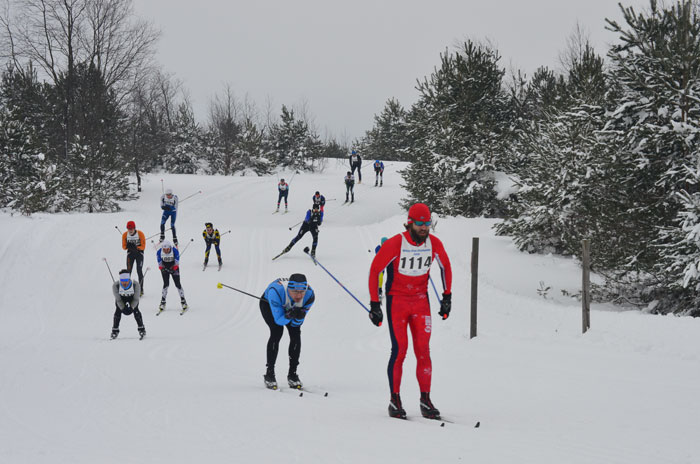 White Pine Stamped cross country ski racers