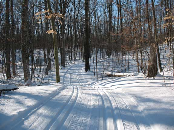 Classic cross country ski trails at Huron Meadows