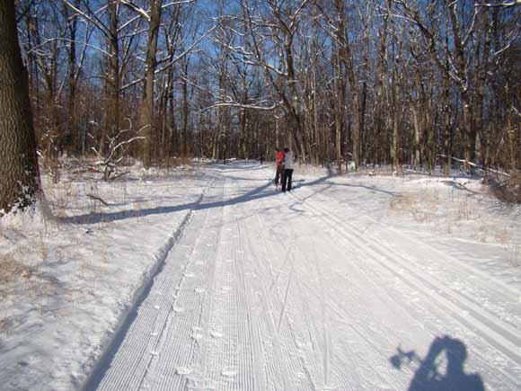 Cross country ski trail at Huron Meadows Metropark
