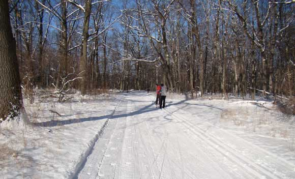Huron Meadows Metropark cross country ski trails for skating and classic skiing