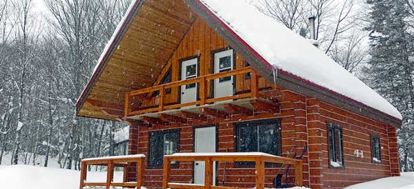 Cross country ski or snowshoe to Norm's cabin
