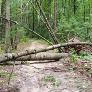 Vasa and TART trails a mess after storms