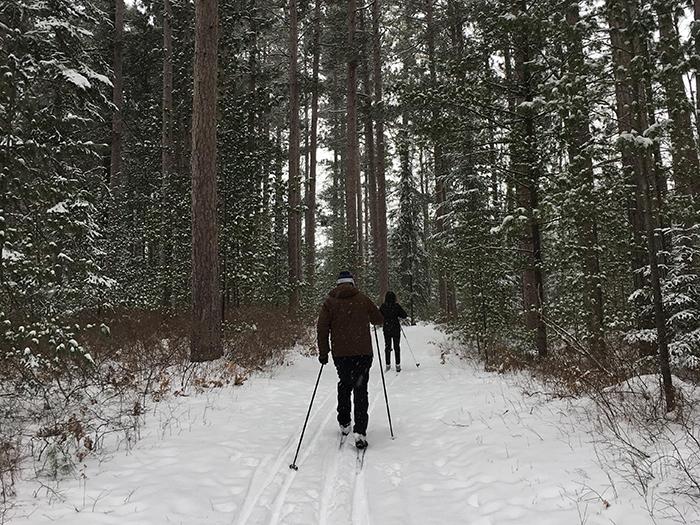 Chippewa Hills Pathway, Mackinaw State Forest