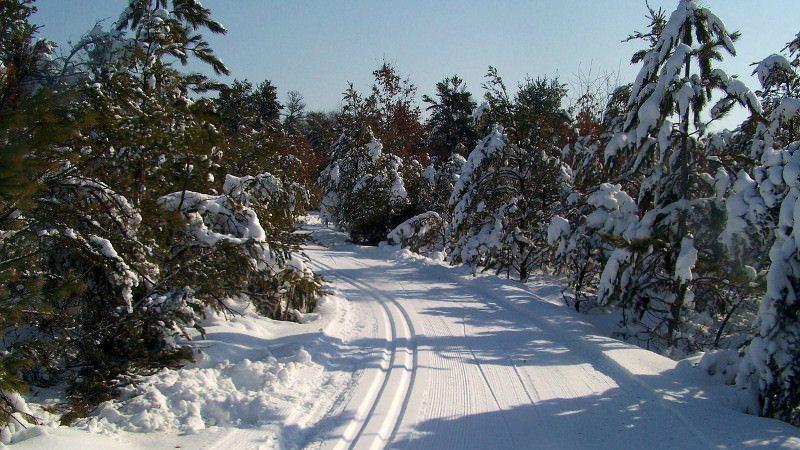 Cross Country Ski Headquarters