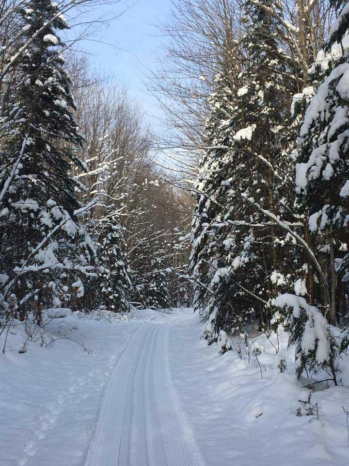 Pine Bowl Pathway