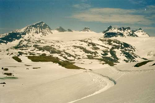 Cross country skiing in the summer in Sognefjell, Norway