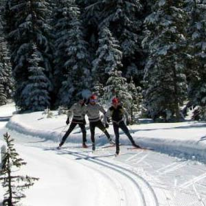 A training recommendation for Master Skiers specifically