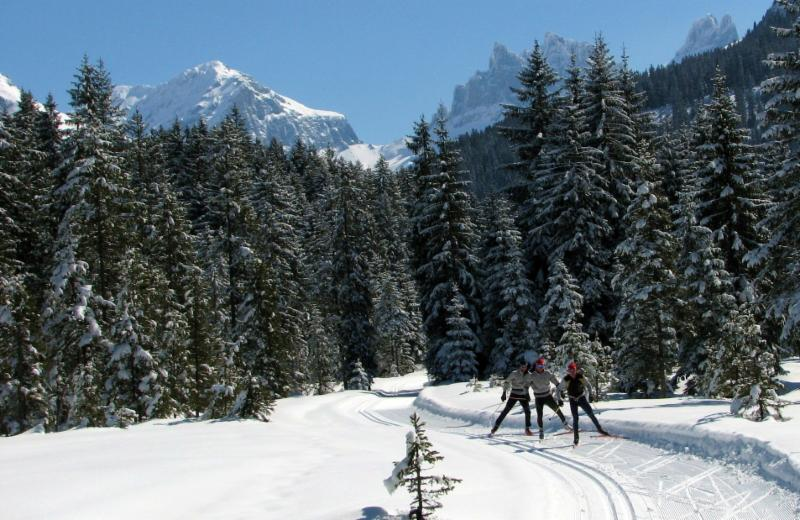 Cross country ski training for master skiers